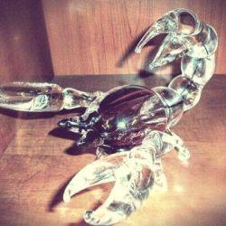 stiklinis skorpionas graviruotas sveikinimas