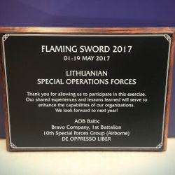 apdovanojimas padeka karines pratybos flaming angliskai
